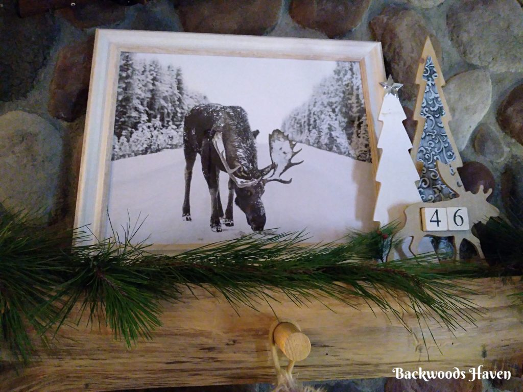 moose in snow photo on mantel