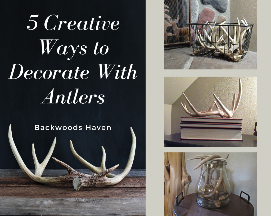 5 creative ways to decorate with antlers