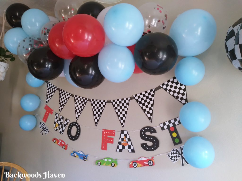 two fast race car birthday party