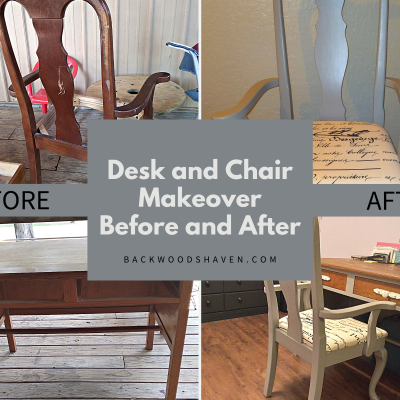 BEFORE AND AFTER DESK AND CHAIR MAKEOVER